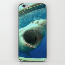 The great white shark, Carcharodon carcharias iPhone Skin