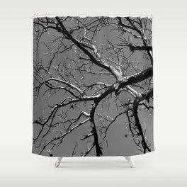 Just out of Reach Shower Curtain
