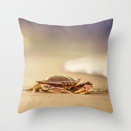 Crab Cribrarius Throw Pillow