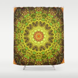 Dimensional Transition Mandala Shower Curtain