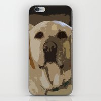 lab iPhone & iPod Skins featuring Lab Love by Courtney Decker