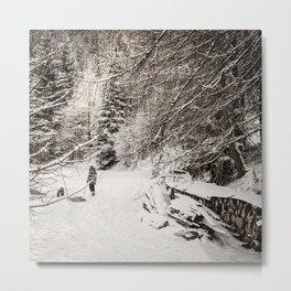 Dans la neige Metal Print