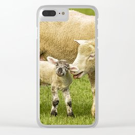 Mama Had a Little Lamb Clear iPhone Case