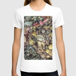 Gems collection 2 T-shirt