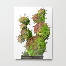 Big Old Stingy Cactus Metal Print
