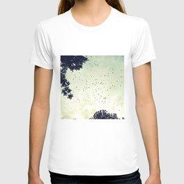 Flock of birds at sunset T-shirt