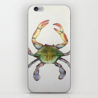 crab iPhone & iPod Skins featuring Crab by Sara Katy