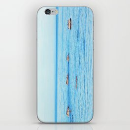 Bird Filled Rocks and a Whale iPhone Skin
