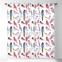 Endangered wild birds species watercolor painting- Cardinals, titmouse ,bushtit, cedar waxwing ,barn Blackout Curtain