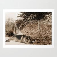 german shepherd Art Prints featuring German Shepherd by Erika Kaisersot