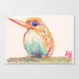 Birds Collection in Watercolor Pencils Canvas Print
