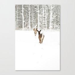 Doe In Winter Canvas Print