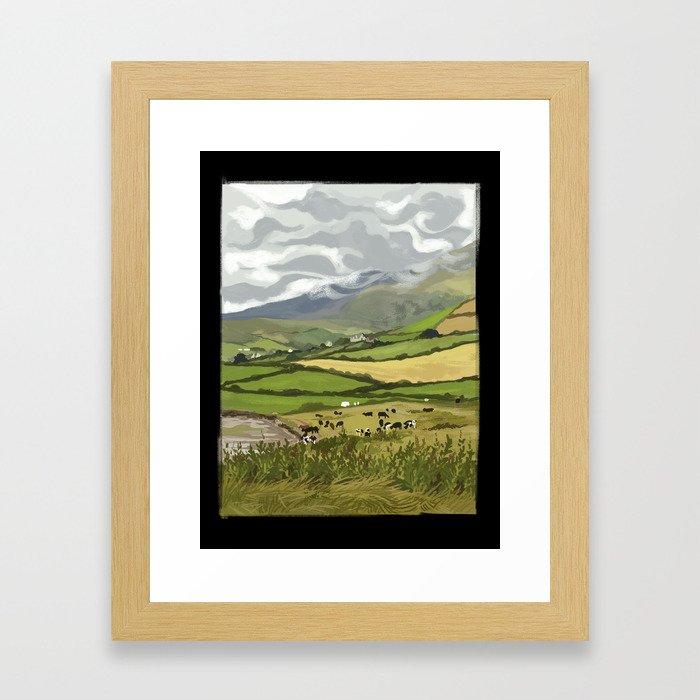 Cows in Dingle, Ireland Framed Art Print