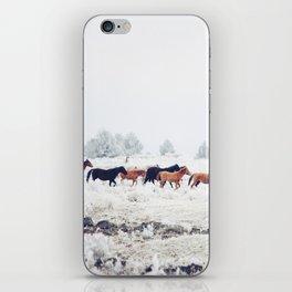 Winter Horse Herd iPhone Skin