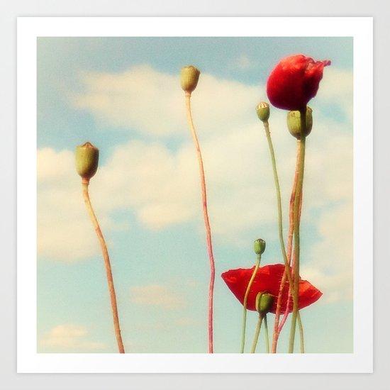 Lost Poppies Art Print