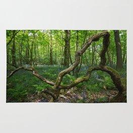 glorious bluebell woodland Rug