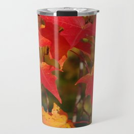 Fiery Autumn Maple Leaves 4966 Travel Mug