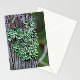 Likin' the Lichen Stationery Cards