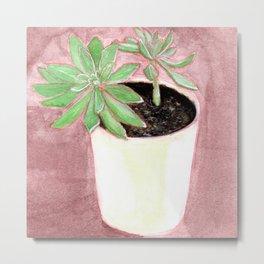 Succulente en pot Metal Print
