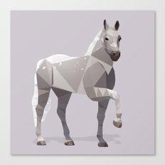 Lipizzaner Horse Canvas Print