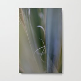 California Cactus Up Close Metal Print