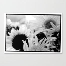 Donna Canvas Print