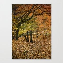 Orange Autumn Canvas Print