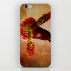 Ruby Lady Slipper Orchid iPhone & iPod Skin