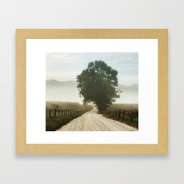 Tree of Life in Cades Cove, TN by Alli Gunter Photography  Framed Art Print