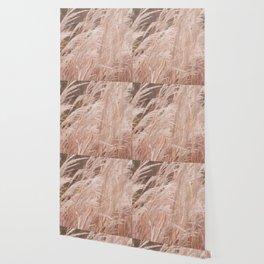 Autumn grass Wallpaper