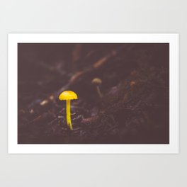 Little Yellow Art Print