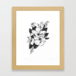 The Chinese Rose & The Tree Frog Framed Art Print