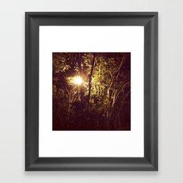 Lurking in the night Framed Art Print