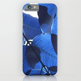 Close Up Leaves II iPhone Case