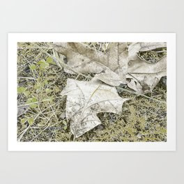 The Fall Frost Art Print
