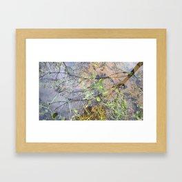 Reflection's Pool Framed Art Print