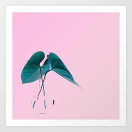 Pink Plant Art Print