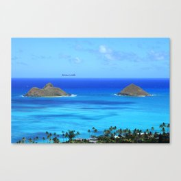 Lost In Paradise Canvas Print