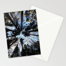 Looking up the Sky Stationery Cards