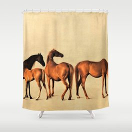 Classical Master Piece Circa 1762  Rockingham Mares and Foals by George Stubbs Shower Curtain
