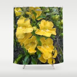 Cat's Claws Vines Shower Curtain