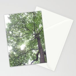 Summer Rays Stationery Cards
