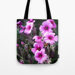 Beauty on The Rock Tote Bag
