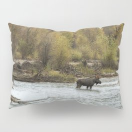Moose Mid-Stream - Grand Tetons Pillow Sham