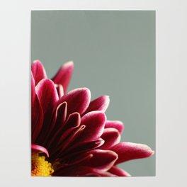 015 Flower Poster