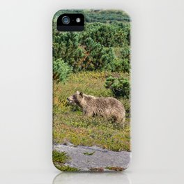 Kamchatka brown bears (mother and cub) iPhone Case