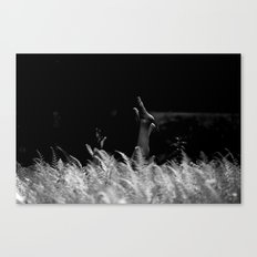 reaching out Canvas Print