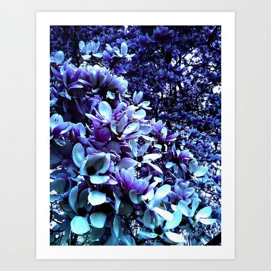 Blue Lillies Art Print