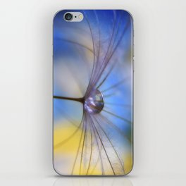 Cool Water A droplet on a Dandelion Seed Parachute iPhone Skin