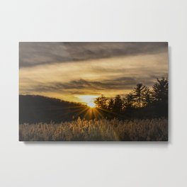 Catching Rays Metal Print